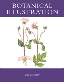 Botanical Illustration, Paperback