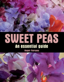 Sweet Peas : An Essential Guide, Hardback