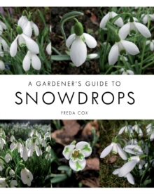 A Gardener's Guide to Snowdrops, Hardback