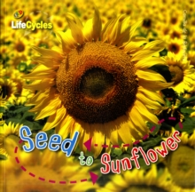Seed to Sunflower, Paperback