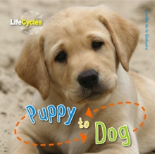 Life Cycles: Puppy to Dog, Paperback
