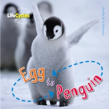 Life Cycles: Egg to Penguin, Paperback