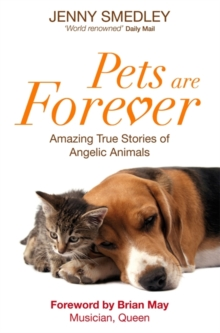 Pets are Forever : Amazing True Stories of Angelic Animals, Paperback