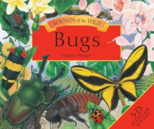 Sounds of the Wild Bugs, Hardback