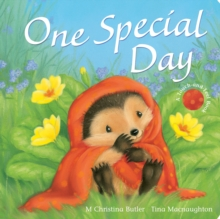 One Special Day, Board book