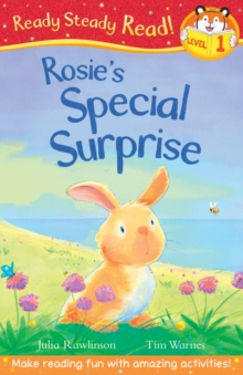 Rosie's Special Surprise, Paperback Book