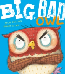 Big, Bad Owl, Paperback