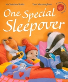 One Special Sleepover, Hardback Book