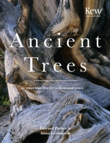 Ancient Trees : Trees That Live for a Thousand Years, Hardback Book