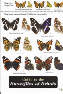 Guide to the Butterflies of Britain, Sheet map, folded
