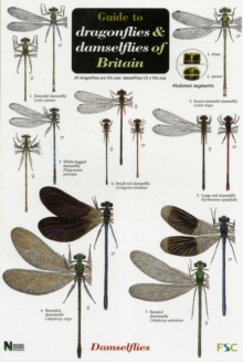Guide to the Dragonflies and Damselflies of Britain, Sheet map, folded