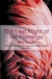The Last Flight of the Flamingo, Paperback Book