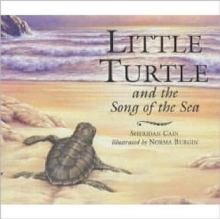 Little Turtle and the Song of the Sea, Paperback
