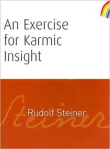 An Exercise for Karmic Insight, Paperback