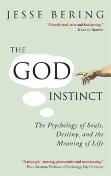 The God Instinct : The Psychology of Souls, Destiny and the Meaning of Life, Paperback Book