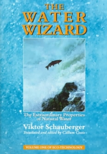 The Water Wizard : The Extraordinary Properties of Natural Water, Paperback