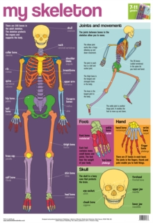 My Skeleton Wallchart, Poster Book