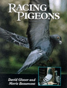 Racing Pigeons, Hardback Book