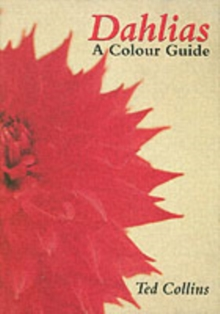 Dahlias : A Colour Guide, Hardback