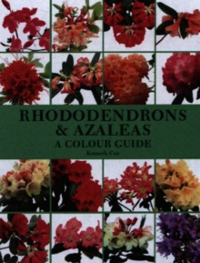 Rhododendrons and Azaleas : A Colour Guide, Hardback Book