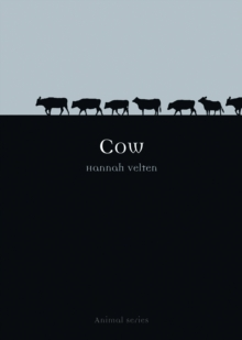 Cow, Paperback