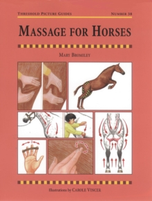 Massage for Horses, Paperback Book