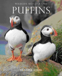 Puffins, Paperback