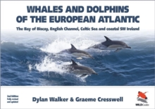 Whales and Dolphins of the European Atlantic : The Bay of Biscay, English Channel, Celtic Sea, and Coastal Southwest Ireland, Paperback