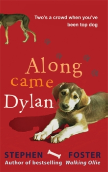 Along Came Dylan : Two's a Crowd When You've Been Top Dog, Paperback