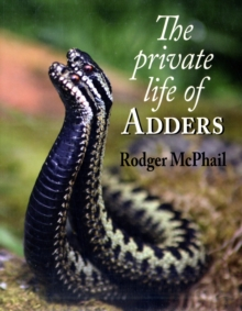 The Private Life of Adders, Hardback