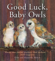 Good Luck Baby Owls, Paperback
