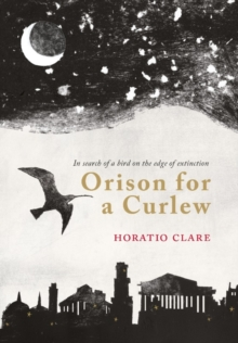 Orison for a Curlew, Hardback
