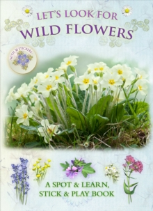 Let's Look for Wild Flowers, Paperback