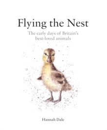 Flying the Nest : The Early Days of Britain's Best-Loved Animals, Hardback
