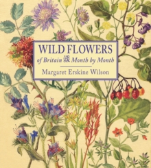 Wild Flowers of Britain : Month by Month, Hardback