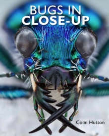 Bugs in Close-Up, Hardback Book