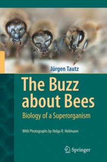 The Buzz About Bees : Biology of a Superorganism, Hardback