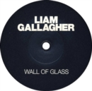 Wall of Glass (Limited Edition) - Vinyl