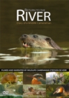 Return to the River - Diary of a Wildlife Cameraman - DVD