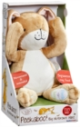 Guess How Much I Love You Peekaboo Hare Soft Toy - Book