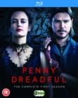 Penny Dreadful: The Complete First Season - Blu-ray