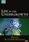 David Attenborough: Life in the Undergrowth - The Complete Seires - DVD
