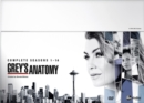 Grey's Anatomy: Complete Seasons 1-14 - DVD