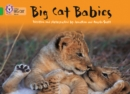 Big Cat Babies : Band 05/Green - Book