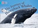 The Journey of Humpback Whales : Band 07/Turquoise - Book