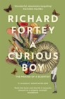 A Curious Boy - eBook