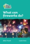 Level 3 - What can fireworks do? - Book