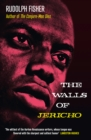 The Walls of Jericho - Book