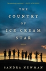 The Country of Ice Cream Star - eBook