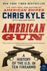 American Gun : A History of the U.S. in Ten Firearms - eBook
